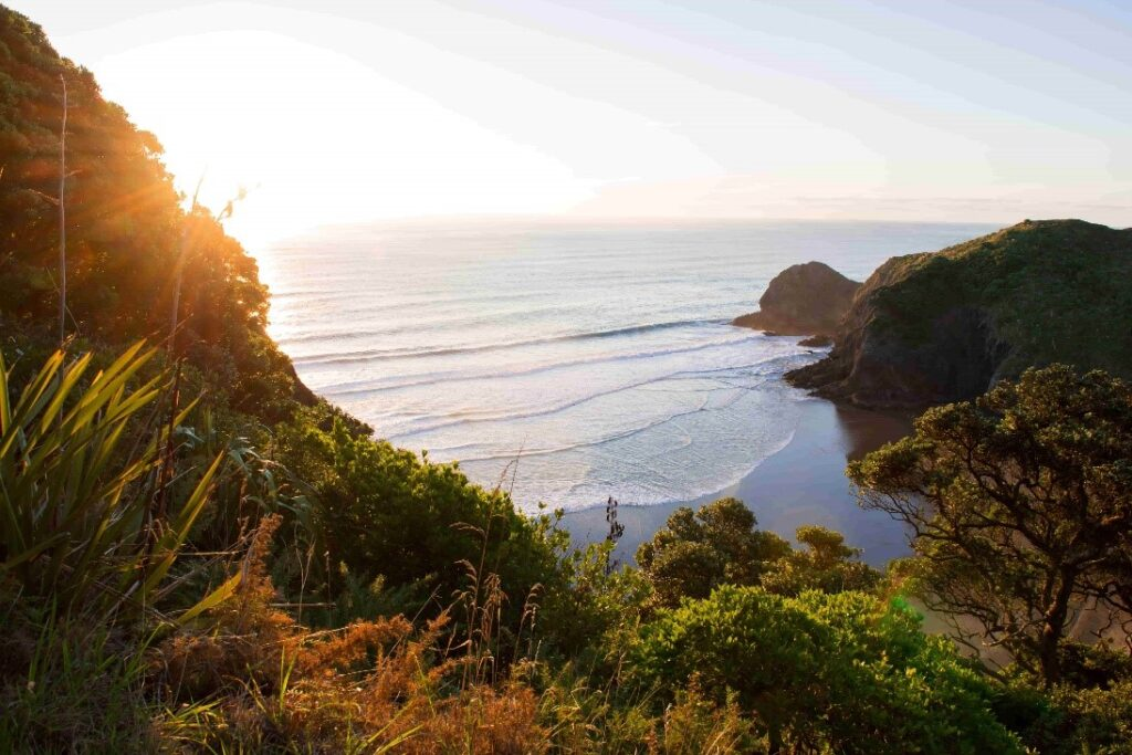 A shot of an iconic Auckland beach from the top of a hill at sunset.